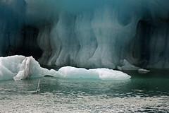 Iceberg ... by Zé Eduardo...