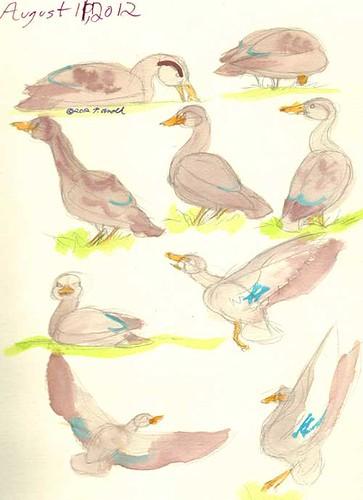 8.11.12 - Sketchbook Page