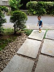 朝散歩 (2012/8/18)