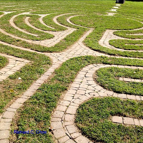 Labyrinth, Five Oaks 1 by rchoephoto