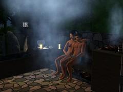 ts3_sunlittides_sauna