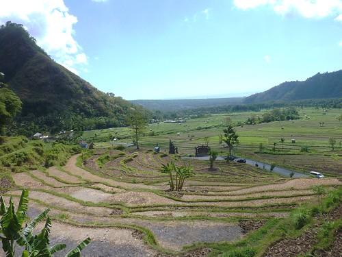Bali-Amed (35)