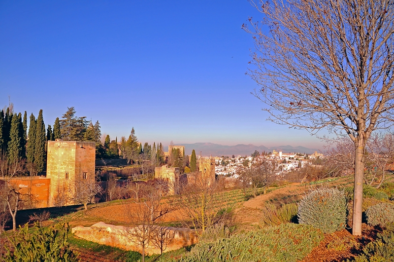 A Veiw from Spain's Alhambra