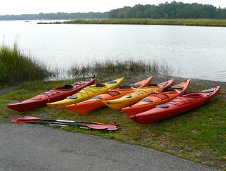 Kayaks at Nanjemoy Creek