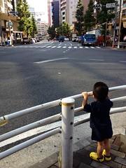 朝散歩 (2012/8/30)