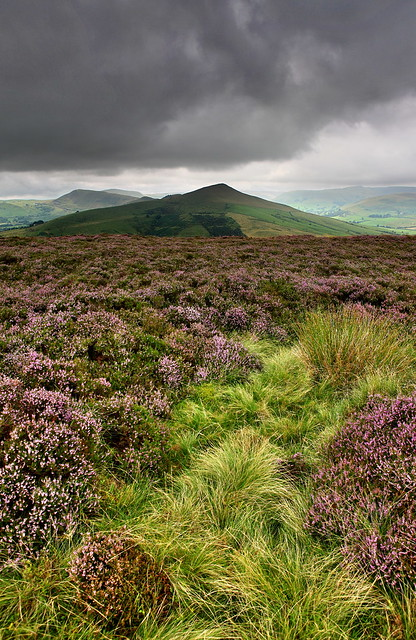 A photo of the countryside in the peak district national park, with purple heather and mountains.
