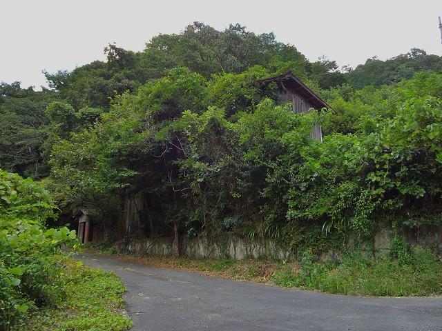 竜山鉱山跡 #7