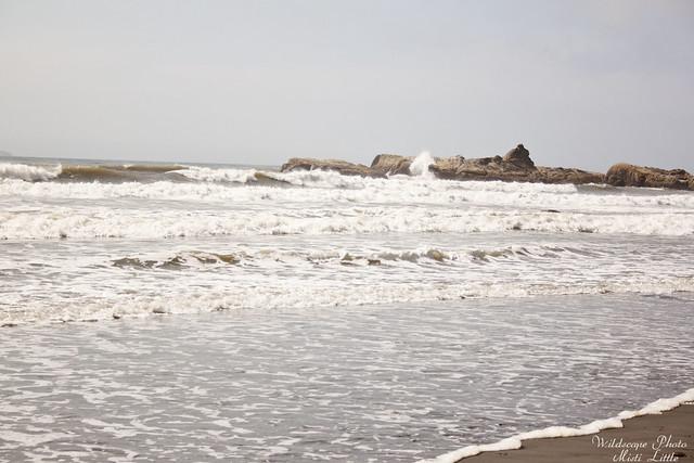 onp_beach22