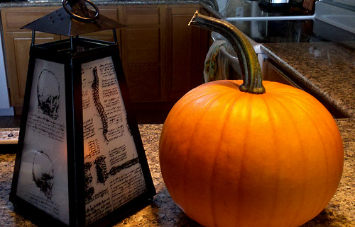 Lantern and Garden Pumpkin by dragonflydesignstudio
