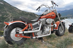 automobile, wheel, vehicle, motorcycle, motorsport, off-roading, motorcycle racing, chopper, motorcycling, land vehicle,