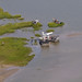 Grand Isle, Louisiana Post Hurricane Isaac Survey Team by Lower Mississippi Riverkeeper(a project of LEAN)