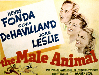"Poster for ""The Male Animal,"" filmed at Pomona College in 1941"
