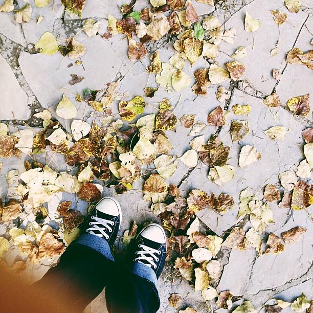 Банально, но тем не менее осень.