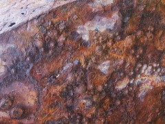 Rust at Collieston