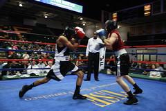 striking combat sports, professional boxing, individual sports, contact sport, sports, combat sport, strike, punch, amateur boxing, boxing,