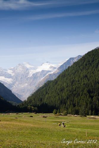 travel people italy europa europe italia gente montagna viaggio vacanza aosta bosco valledaosta cogne granparadiso tamron1750 farsergio eos500d