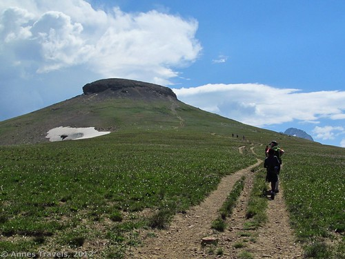 Summit block of Table Mountain, Jedediah Smith Wilderness Area, Caribou-Targhee National Forest, Wyoming