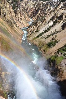 Lower Falls - Yellowstone N.P.