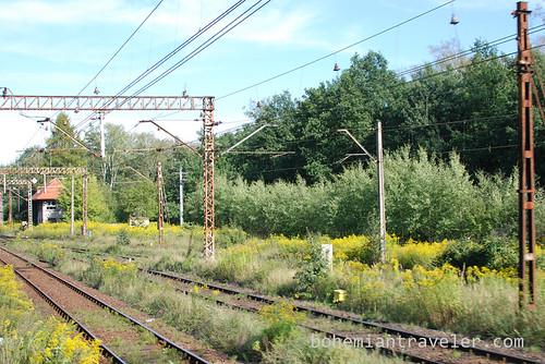 Poland train view (18)
