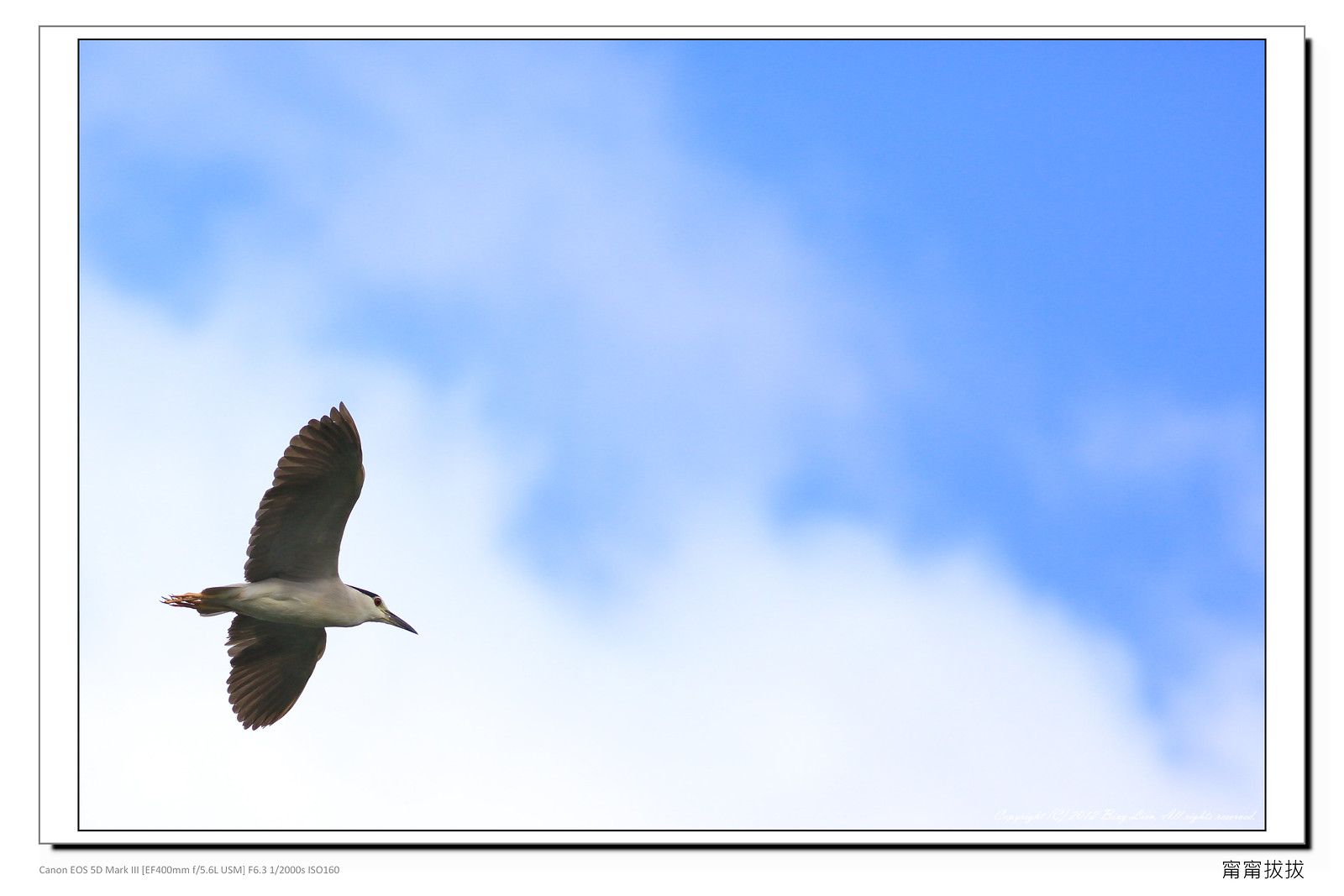 frame_BING6926