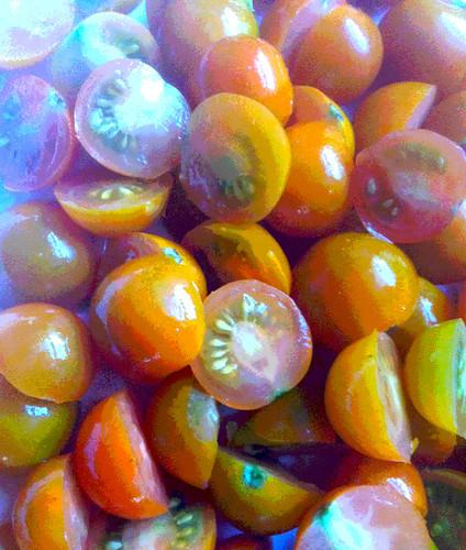 Cherry Tomatoes (Posterized) by randubnick