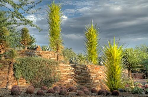 arizona sculpture southwest glass phoenix garden botanical desert dalechihuly hdr desertbotanicalgarden dbg jhaskellus jhaskell jackhaskell