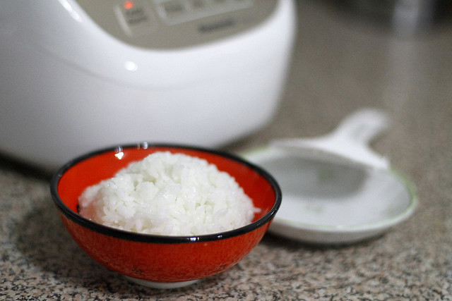 Our Fuzzy Rice Cooker (a.k.a. Korean Rice Cooker)