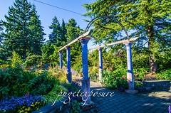 Evergreen Arboretum & Gardens
