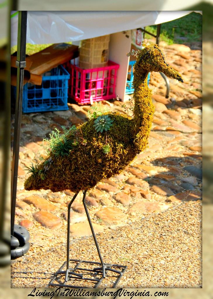 Strange critters at market