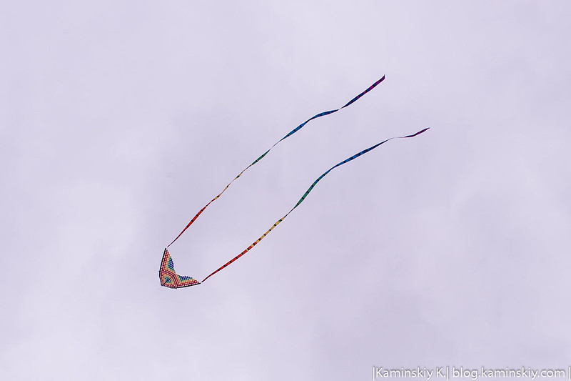 Kite Championship
