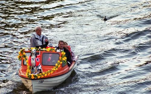 2005 denmark duck and regatta danmark saling silkeborg båd viewfromthebridge gudenåen sejler remstrupå minoltadynax3laf3580