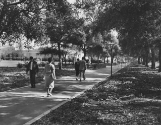 1959 photo of Stover walk