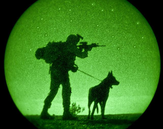Dog Training Yuma