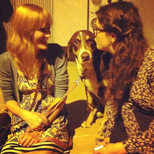 We met Bilbo the pup yesterday.