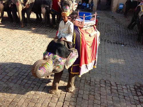 インド旅行2012
