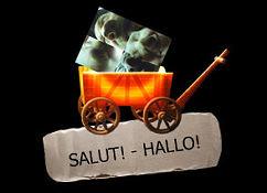 Hallo - PLUS PETIT