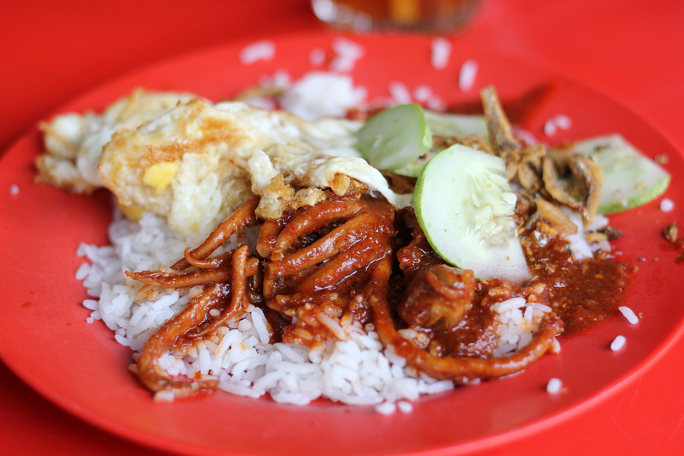 14 malaysian food photos are you ready to drool malaysian nasi lemak forumfinder Gallery