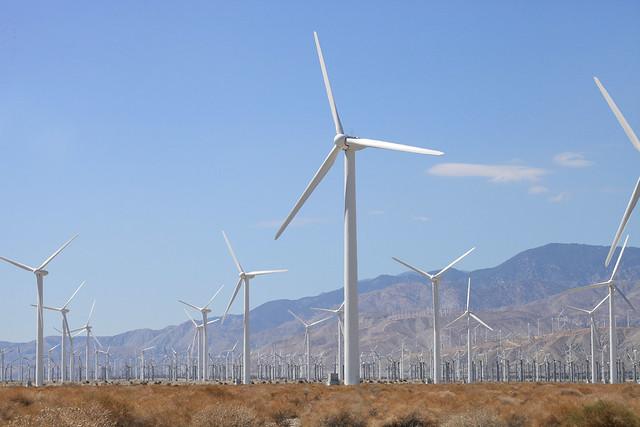 Solitary Windmill