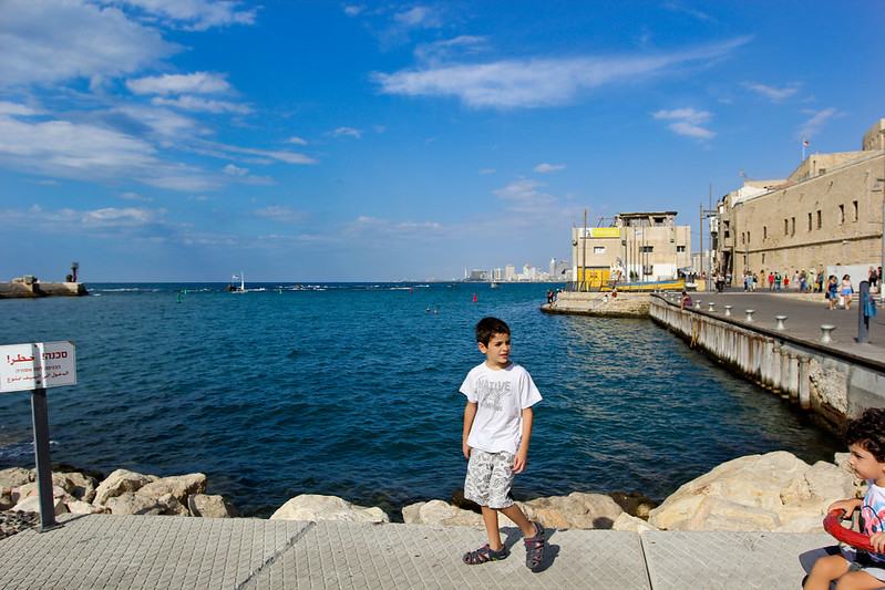shaked at the jaffa port