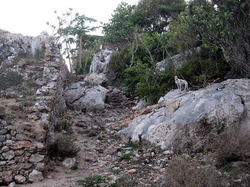 Haiti Weekend 009