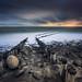 Coastal Path by albert dros
