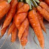 Love carrots. #spooning