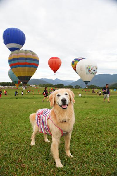 熱氣球-1-8