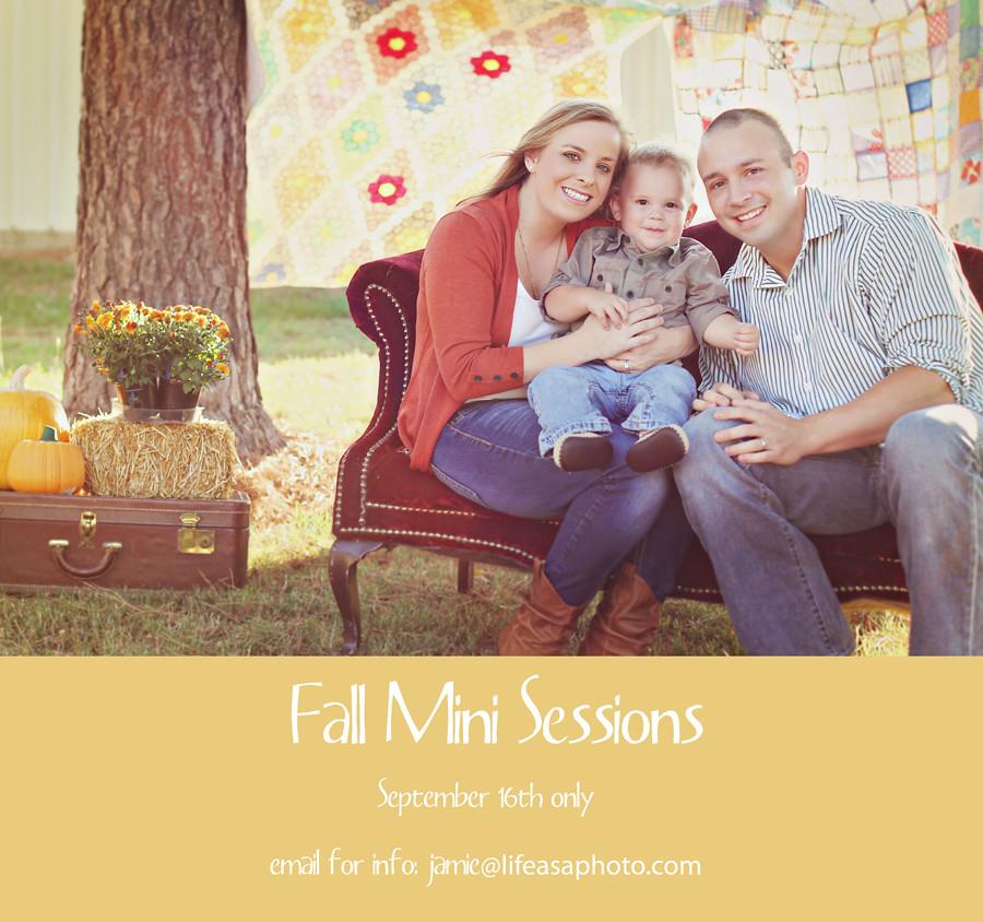 fall minis blog