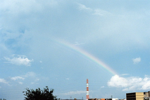 「とびきり」 Rainbow #224 かず