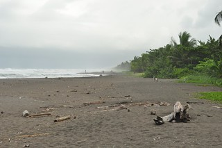 Playa de Tortuguero, muy brava Tortuguero - 7950160388 f334a7706b n - Tortuguero, entre la tranquilidad y la vida salvaje