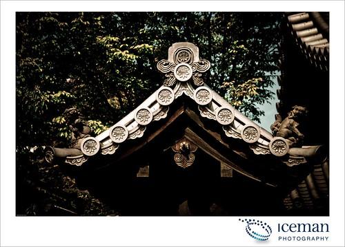 Myoshin-ji Temple 385