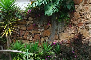 Paysagement | Landscaping | Paisajismo