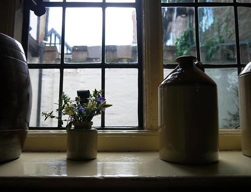 The Kitchen Windowsill