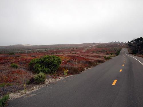 Path near state park